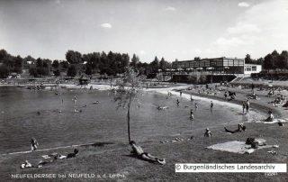 Neufelder See 1966