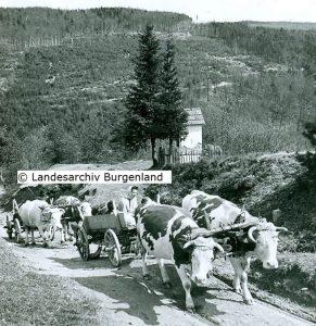 Glashütten bei Langeck.