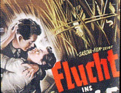 """Der Film """"Flucht ins Schilf"""" – """"ein Feind des Burgenlandes"""""""