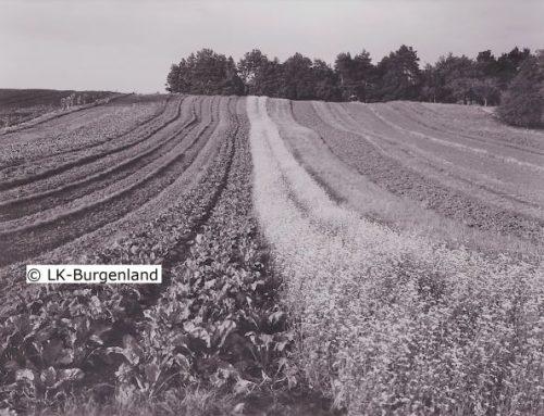 Bodenreform ohne Enteignung